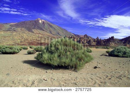 Volcano Landscape