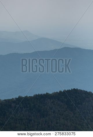 Layers Of Foggy Ridges In Sounthern Appalachian Mountains In The Great Smoky Mountains National Park