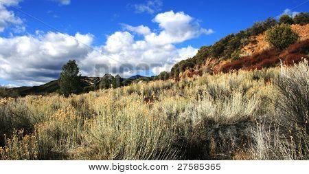 Sespe Wilderness Panorama
