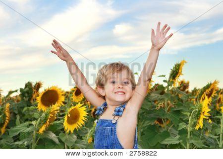 Happy Boy In A Field Of Sunflowers