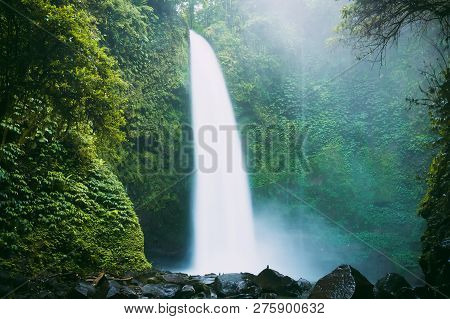 Powerful Waterfall In Bali. Tropical Forest And Nung Nung Waterfall