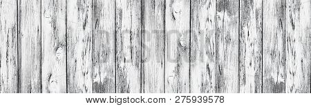 Weathered White Painted Wooden Boards. Wide Rustic Texture. Old Knotty Cracked Wood Surface. Rural B