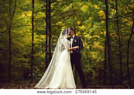 Young Beautiful Wedding Couple Of Woman In White Long Dress And Veil And Man In Black Formal Suit St