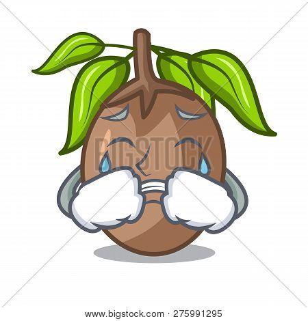 Crying Sapodilla Fruit Cut In Shape Cartoon