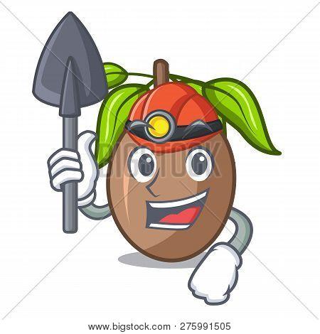 Miner Sapodilla Fruit Cut In Shape Cartoon