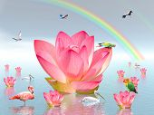 Pink lily flowers on water under rainbow and surrounded by many birds by beautiful weather poster