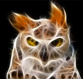 A fractal - render of a owl with piercing eyes . poster