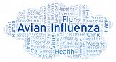Avian Influenza word cloud, made with text only poster