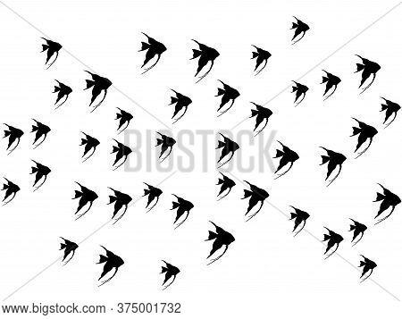 Black Angelfish, School Of Fish Swimming Vector Illustration. Ocean Or Sea Background. Shoal Of Fish