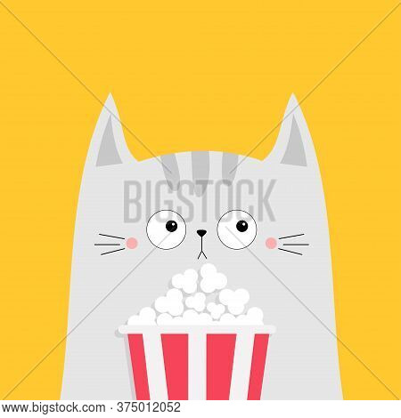 Cat And Popcorn Box. Kitten Watching Movie. Cute Cartoon Funny Character. Kids Print For Tshirt Note