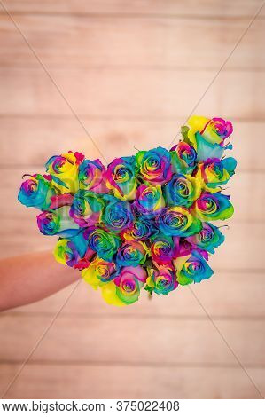 Women Hand Holding A Bouquet Of Tinted Rainbow Roses Variety, Studio Shot, Multicolored Flowers