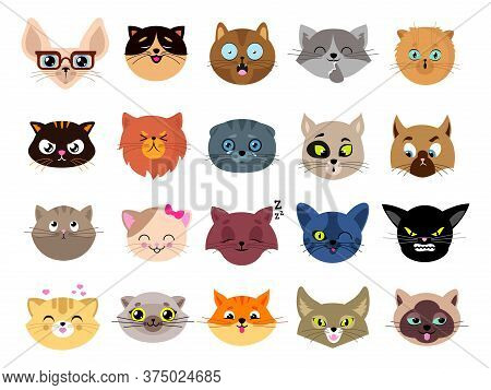 Cats Avatars. Flat Cat Faces. Isolated Kitten Heads With Eyes. Animals Funny Emoji Characters, Emoti