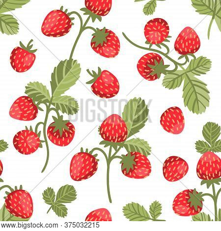Seamless Vector Pattern With Big Tasty Wild Strawberries On White Background. Trendy Summertime Prin
