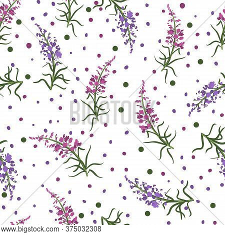Seamless Floral Pattern With Branches Of Fireweed Flowers. Ivan Chai. Hand Drawn Botanical Illustrat