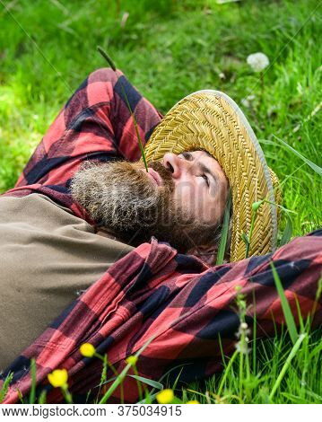 Rest In Countryside. Farmer Bearded Man Rest After Day Work. Farmer Relax On Green Grass. Ecology Co