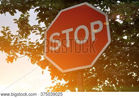 Stop Road Sign On A Background Of Tree Crowns - Photo At Sunset. Warm Toned Photo Of A Road Sign.