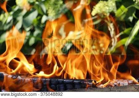 Bonfire. Orange Flame Of A Fire. Bonfire On The Grill With Smoke. Arson Or Natural Disaster. Bonfire