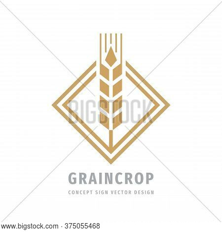 Grain Crop Cereal Logo Template Creative Illustration. Ear Of Wheat Organic Logo Sign. Ecology Symbo