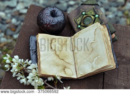 Open Diary With Empty Pages, Black Apple And Blooming Branch On Planks. Esoteric, Gothic And Occult