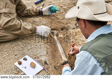 Two Paleontologists Extract Fossilized Bone From The Ground In The Desert, Focus On A Close Research