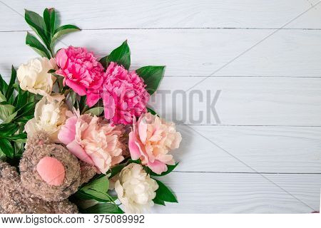 Pink Beautiful Flowers On White Wooden Background. Bouquet Pions With Plush Toy Cat. Universal Greet