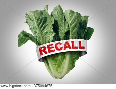 Salad Recall As Romaine Lettuce E Coli Outbreak Food Poisoning As A Vegetable Cyclospora Contaminati