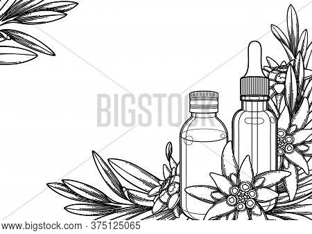 Graphic Essential Oil Bottles Decorated With Edelweiss Leaves And Flowers