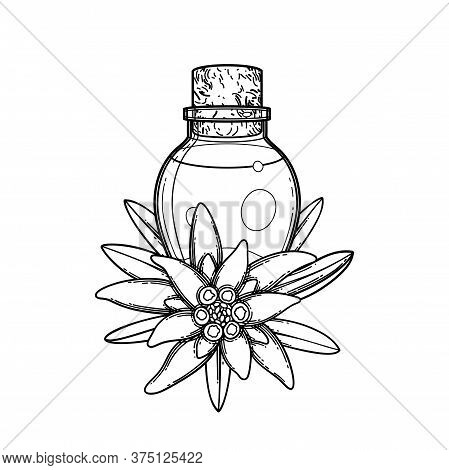 Graphic Essential Oil Bottle Decorated With Edelweiss Leaves And Flowers