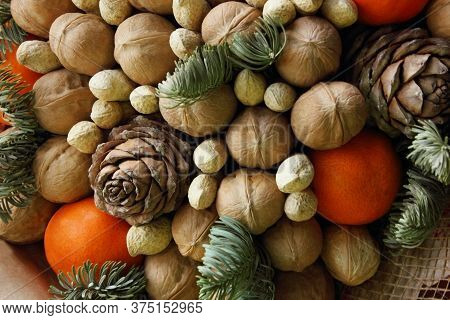 Gift Christmas Bouquet. Pine Cones, Oranges, Peanuts, Walnuts, Spruce Branch In A Beautiful Package.