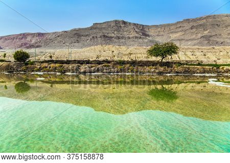 The famous healing Dead Sea. Israel. Misty winter morning. Trees on the shore are reflected in the mirror surface of the water. Ecological and photo tourism concept