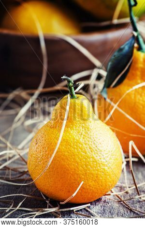 Funny Fresh Tangerines In The Shape Of Pears On A Vintage Background Deervyannom Hay, Selective Focu