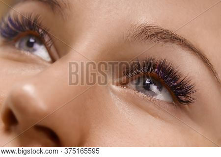 Eyelash Extension Procedure. Close Up View Of Beautiful Female Eye With Long Eyelashes, Smooth Healt