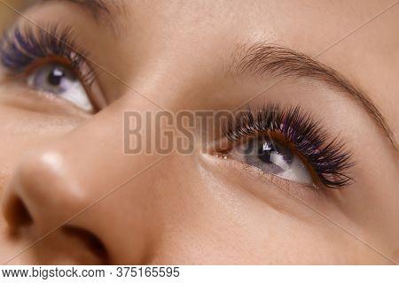 Eyelash Extension Procedure. Close Up View Of Beautiful Female Eye With Long Eyelashes, Smooth Healt