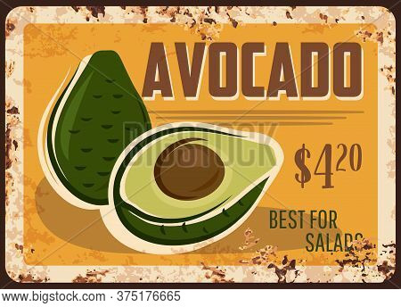Avocado Rusty Metal Plate, Vector Fresh Fruit, Vintage Rust Tin Sign, Price Tag For Market Or Store.