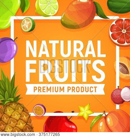 Natural Fresh Fruits Poster, Vector Pineapple, Apple And Apricot, Lychee, Prune And Mango. Lime, Gra