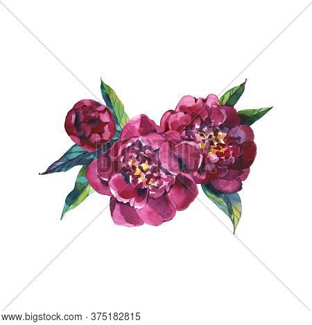 Watercolor Floral Bouquet Purple Burgundy Roses Peonies Fall Leaves And Flowers Isolated On White Ba