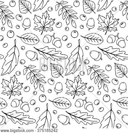 Seamless Pattern Falling Leaves, Acorns, Berries. Vector Autumn Texture Isolated On White Background