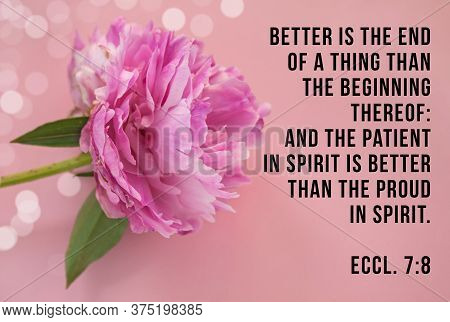 Better Is The End Of A Thing Than The Beginning Thereof: And The Patient In Spirit Is Better Than Th