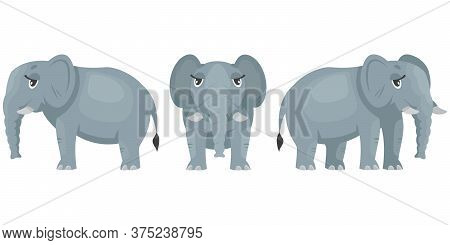 Female Elephant In Different Poses. African Animal In Cartoon Style.
