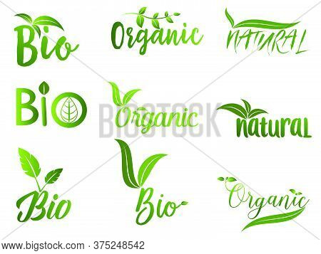 Collection Of Green Healthy Organic Natural Eco Bio Food Products Label