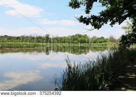 Reflections On A Lake During A Bright Sunny Day With Lush Trees And Shadows