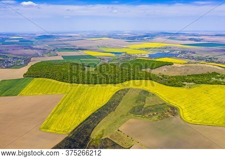 Above View Of Canola Fields Near Forest And Spring Landscape