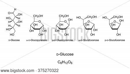 Glucose, Monosaccharide, Chemical Structure. Simple Sugar. Natta Projection Of Open-chain D-glucose.