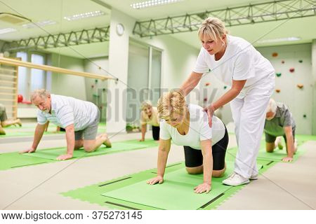 Physiotherapist gives senior citizens help with back exercises and physiotherapy