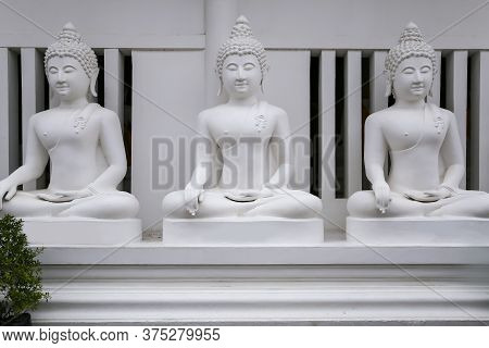 Close-up The Buddha Standing Isolated On White Background. Enlightenment Buddha Concept With Clippin