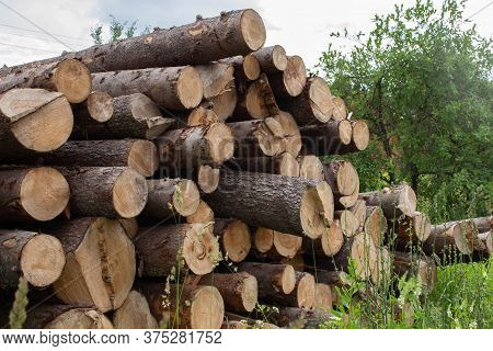 Stocks Of Firewood In The Village. A Woodpile Of Firewood, Wooden Textures