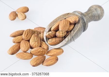 Tasty Almonds Nuts - Prunus Dulcis. Text Space