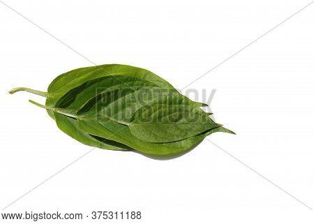Skunk Vine Or Stinkvine Leaves Isolated On White Background