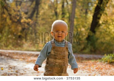 Adorable Baby In Autumn Park