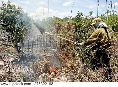 Prado, Bahia / Brazil - December 8, 2009: Brigade Members Fight Forest Fire In Native Forest In The
